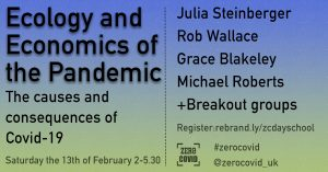 An advert for the event 'Ecology and Economics of the Pandemic', Saturday 13th February 2021, 2pm-6.00pm